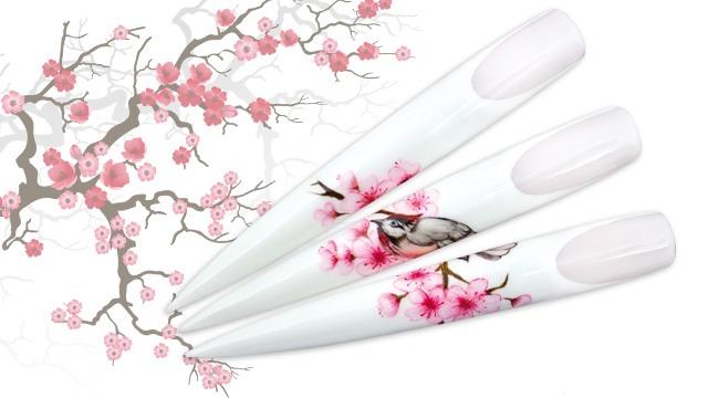 <i><a href='/magazin/?c=3425'><h3>Valentýnská inspirace z Japonska</h3><p>Blížící se Valentýn přímo svádí k vytvoření romantického Nail Artu. Inspirujte se křehkou krásou japonských sakur, jejichž větve se pohupují v mírném vánku a sladce vonícími květy lákají ptáky nejen k odpočinku.</p></a></i>